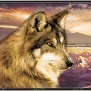 Wolf Moon Image 3