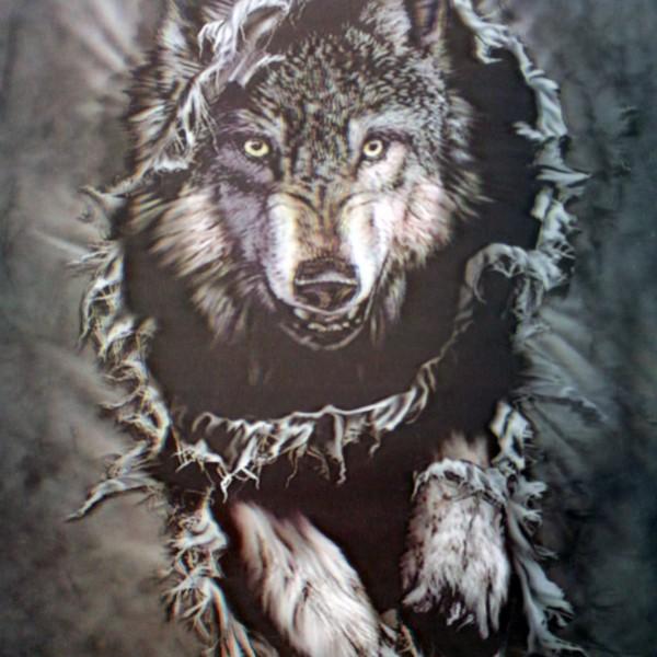 B&W Wolf
