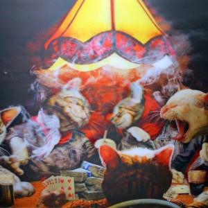 Poker Cats