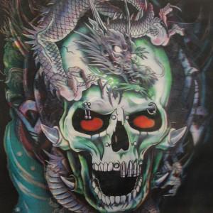 Snake Skull Image 1
